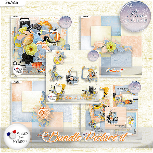 Picture it Bundle (PU/S4H) by Bee Creation