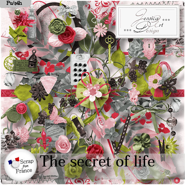 http://scrapfromfrance.fr/shop/images/Jessica_images/TheSecretOfLife_Preview.jpg
